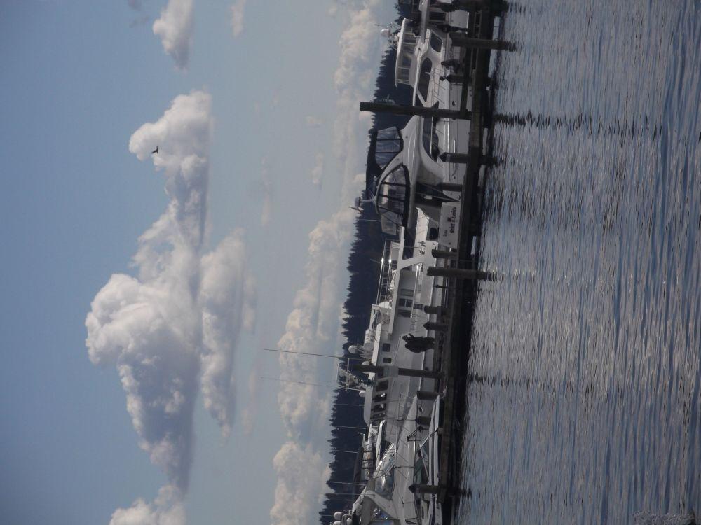 Photos of Bellevue
